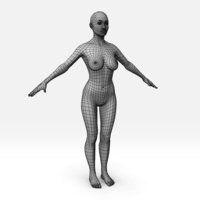 Female Basemesh 3D Model