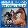 17 10 19 9 horses thumb 00 4