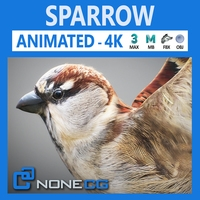Animated Sparrow 3D Model