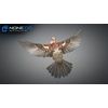 17 49 47 419 sparrow 10 4