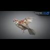 17 49 48 190 sparrow 13 4