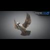 17 49 48 390 sparrow 16 4