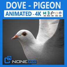 Animated White Dove 3D Model