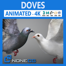 Doves Animated 3D Model