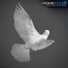 17 59 47 655 doves 008 4