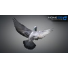 17 59 48 56 doves 007 4