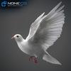 17 59 49 451 doves 014 4