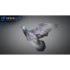 17 59 49 535 doves 015 4