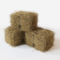 straw 3D Model
