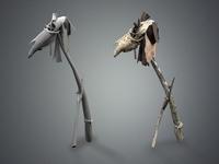 bone 3D Model
