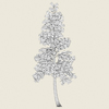 10 24 37 731 conifer tree 04 03 4