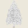 11 07 24 966 conifer tree 06 03 4