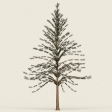 Game Ready Conifer Tree 07 3D Model