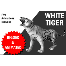 White Tiger with animation 3D Model