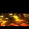 12 35 37 503 001 lavaterrain 4
