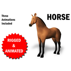 3D Horse Rigged and Animated 3D Model