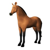 11 54 32 872 horse 0001 4