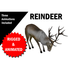 Reindeer RIgged and Animated 3D Model