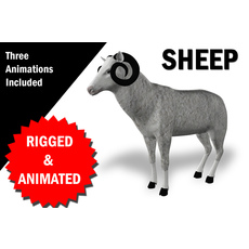 Sheep Rigged and Animated 3D Model