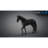 10 48 02 874 3d animated horses 006 4