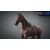 10 48 03 200 3d animated horses 007 4