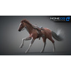 10 48 03 260 3d animated horses 011 4