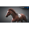 10 48 03 315 3d animated horses 009 4