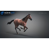 10 48 03 616 3d animated horses 012 4