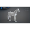 10 48 03 757 3d animated horses 013 4