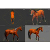 10 48 03 822 3d animated horses 015 4