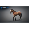 10 48 04 228 3d animated horses 019 4