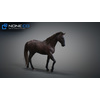10 48 04 326 3d animated horses 022 4