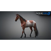 10 48 04 327 3d animated horses 021 4