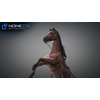 10 48 04 399 3d animated horses 023 4