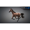 10 48 04 583 3d animated horses 024 4