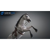 10 48 04 647 3d animated horses 025 4