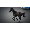 10 48 04 739 3d animated horses 026 4