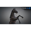 10 48 04 751 3d animated horses 027 4