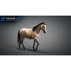 10 48 04 758 3d animated horses 028 4