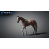 10 48 04 818 3d animated horses 029 4