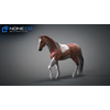10 48 05 128 3d animated horses 031 4