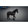10 48 05 216 3d animated horses 032 4