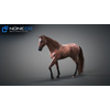 10 48 05 240 3d animated horses 033 4