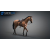 10 48 05 416 3d animated horses 034 4