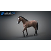 10 48 05 516 3d animated horses 035 4