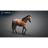 10 48 05 576 3d animated horses 036 4