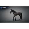 10 48 05 601 3d animated horses 037 4