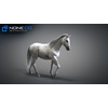 10 48 05 79 3d animated horses 030 4