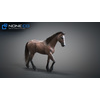 10 48 05 821 3d animated horses 038 4