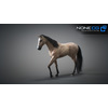 10 48 05 996 3d animated horses 041 4